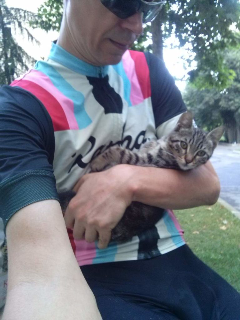 2015-07-17-02 with tabby kitten
