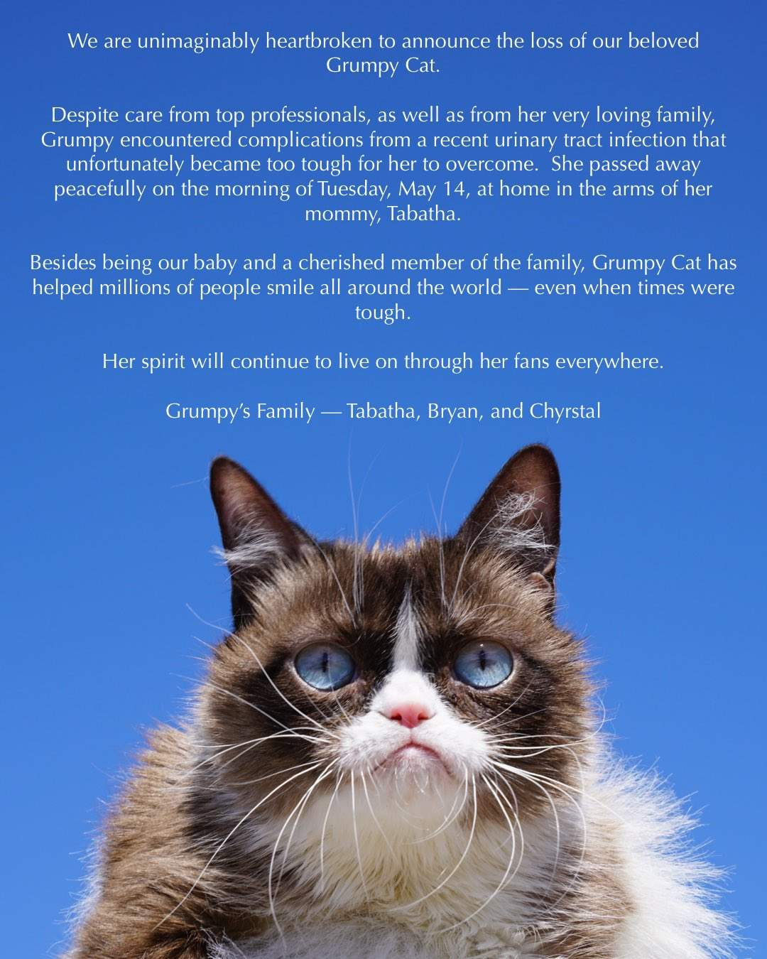 Grumpy Cat death announcement